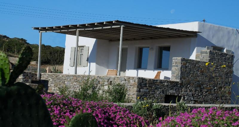 External view - Villa Rodia - Aegean bliss,next to the best beach - Paros - rentals