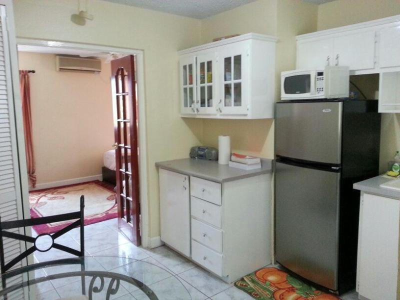 Fully equipped kitchen with everything you'll ever need - Centrally located modern retreat - Kingston - rentals