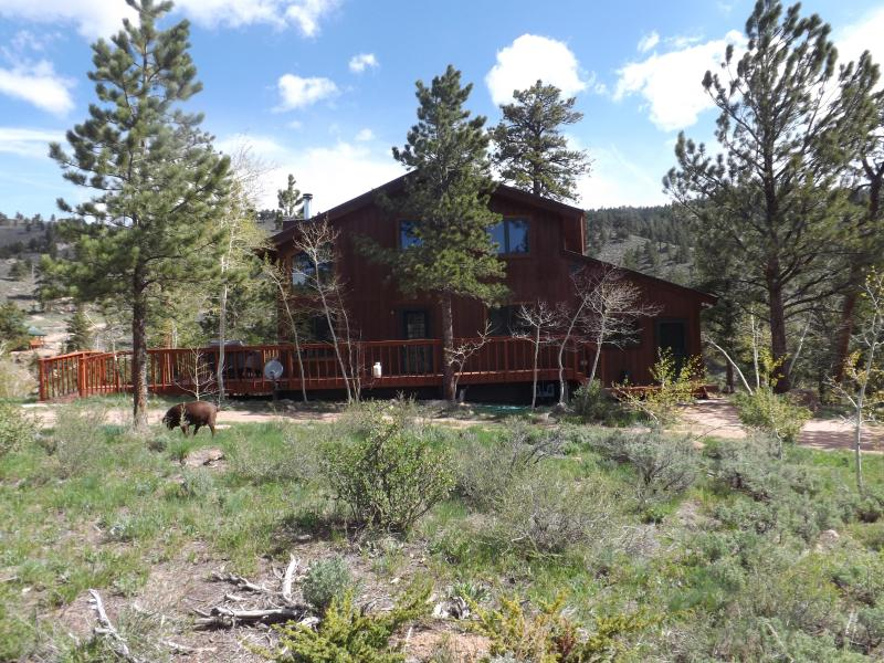 Creekside Corral in Red Feather Lakes-horse haven - Image 1 - Red Feather Lakes - rentals