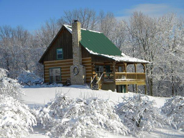 Luxury log cabin located in a working orchard - Image 1 - Philo - rentals