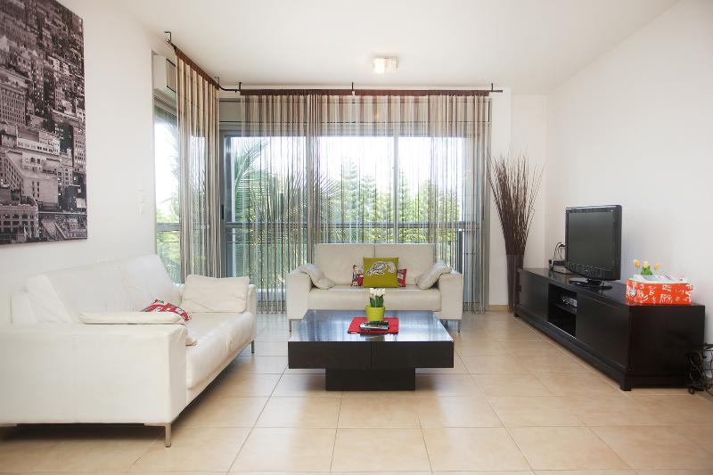 The Living room - Raanana Luxury 3 BR apt + sun balcony - REF14 - Ra'anana - rentals