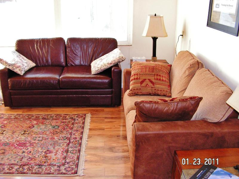 Living room - Located near Canyon Lodge. Opening Day Discounts - Mammoth Lakes - rentals