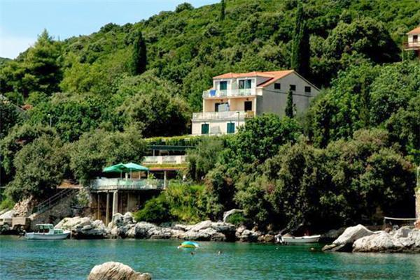 Renovated apartment for 3 persons, with swimming pool , near the beach in Cavtat - Image 1 - Molunat - rentals