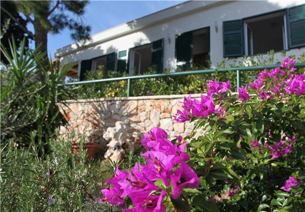 Holiday house for 8 persons in Brac - Image 1 - Milna - rentals