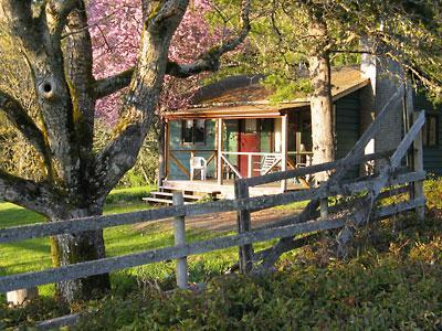 The Green Cottage is a recently renovated, classic country style guesthouse. - Classic Farm Stay Cottage - Salt Spring Island - rentals