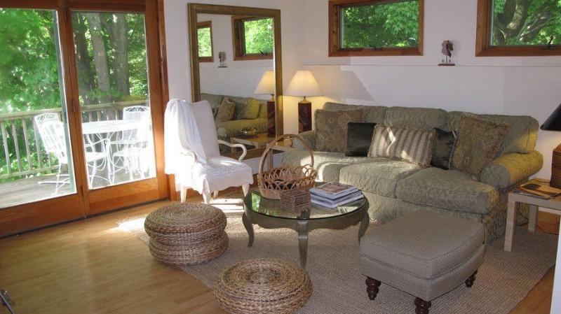 Living Room leads to outdoor deck for summer Dining/Reading/Relaxing - Catskill Ski / Wedding / Vacation - Andes - rentals