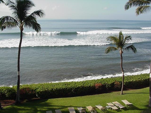 Million Dollar View - Full Oceanfront Apartment-A Place In Paradise! - Wailuku - rentals