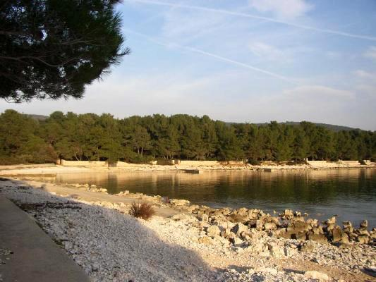 Attractive apartment for 5 persons near the beach in Losinj - Image 1 - Mali Losinj - rentals