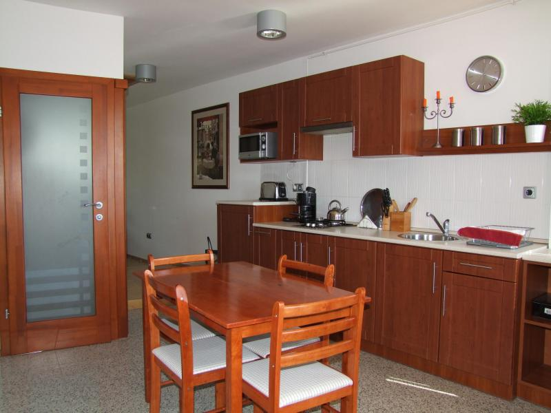 Luxury apartment in the heart of Eger - Image 1 - Eger - rentals