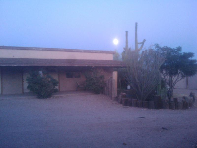 Quiet desert retreat with Awesome mountain views - Image 1 - Apache Junction - rentals