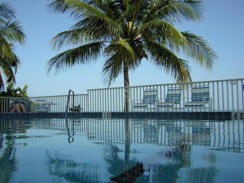 From the pool - Ocean/Beachfront  Condo on Coco Plum - Marathon - rentals