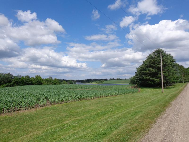 Driveway into farm - The Preserve on Deer Lake - Annandale - rentals