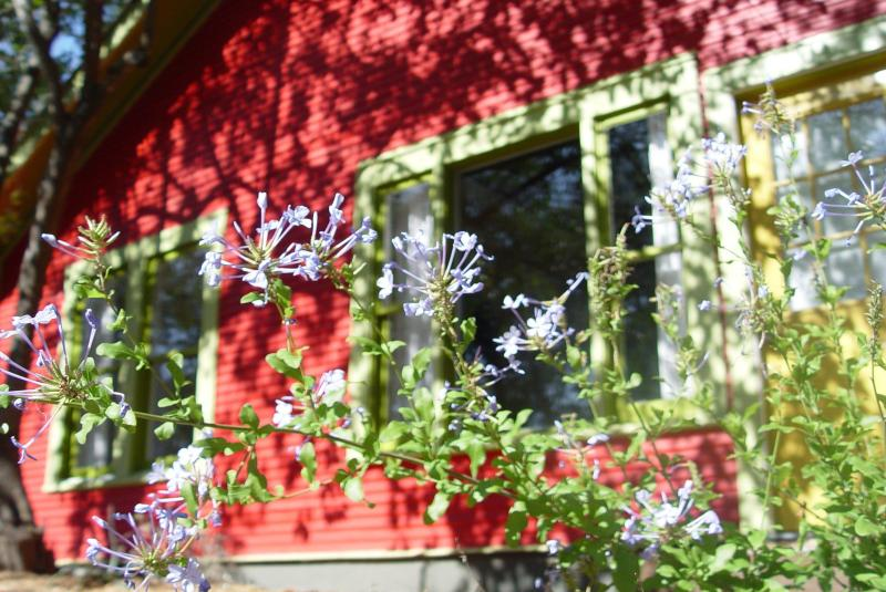 Soco Spaces: Red House. Adorable updated 1926 bungalow. - Walk to it all! Cottage near SoCo - no booking fee - Austin - rentals