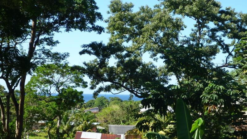 View from our balcony - La Casa de Madera - Honduras - rentals