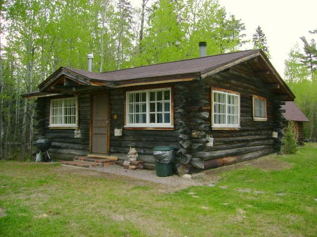 Historical one room log cabin - Charming One Room Log Cabin on White Iron Lake - Ely - rentals
