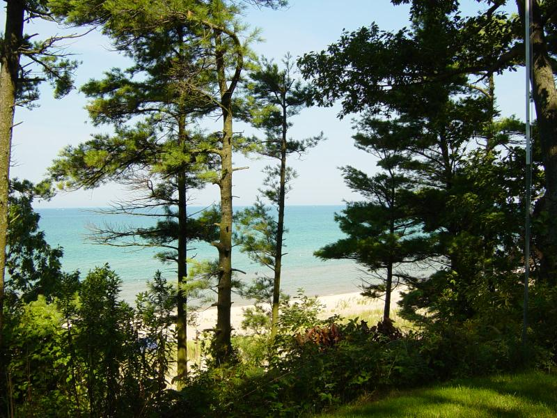 Cottage on Lake Michigan - Midsummer Retreat - Pentwater - rentals