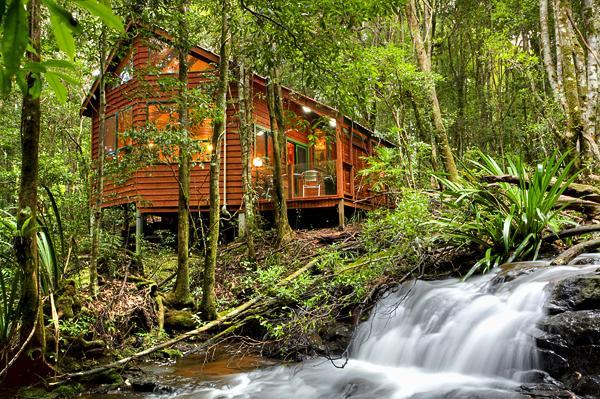 Stream Chalet - The Mouses House Rainforest Retreat - Springbrook - rentals