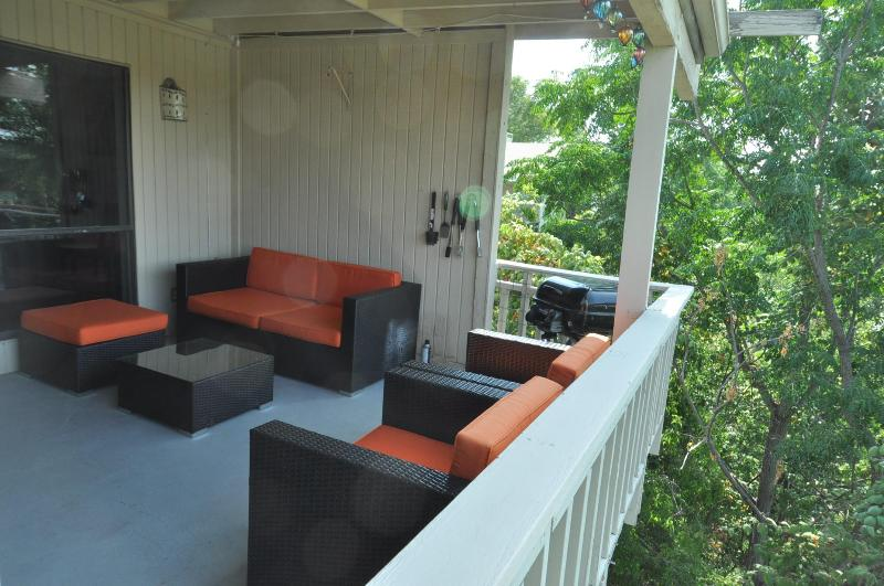 The Double View - 2/2 with two decks in Zilker! - Image 1 - Austin - rentals