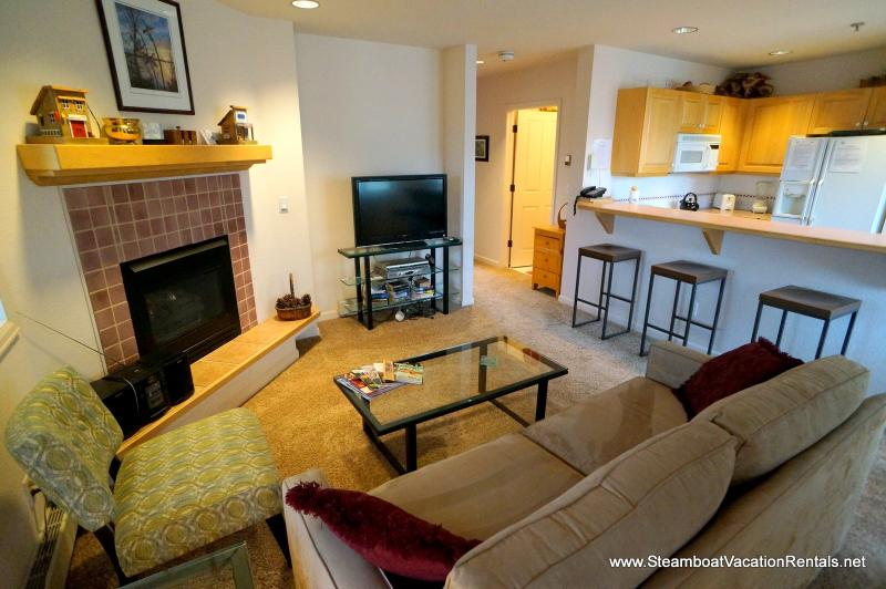 Terraces at Eagle Ridge #N23 - Image 1 - Steamboat Springs - rentals