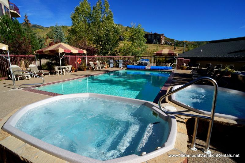 Torian Plum #303 - Image 1 - Steamboat Springs - rentals