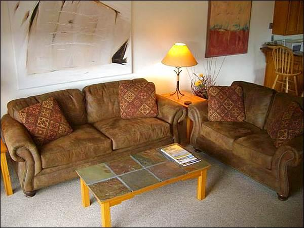 Leather Furnishings and a Sleeper Sofa in the Living Room - Beautiful Finishes & Furnishings - Views of Whetstone & Axtel (1270) - Crested Butte - rentals