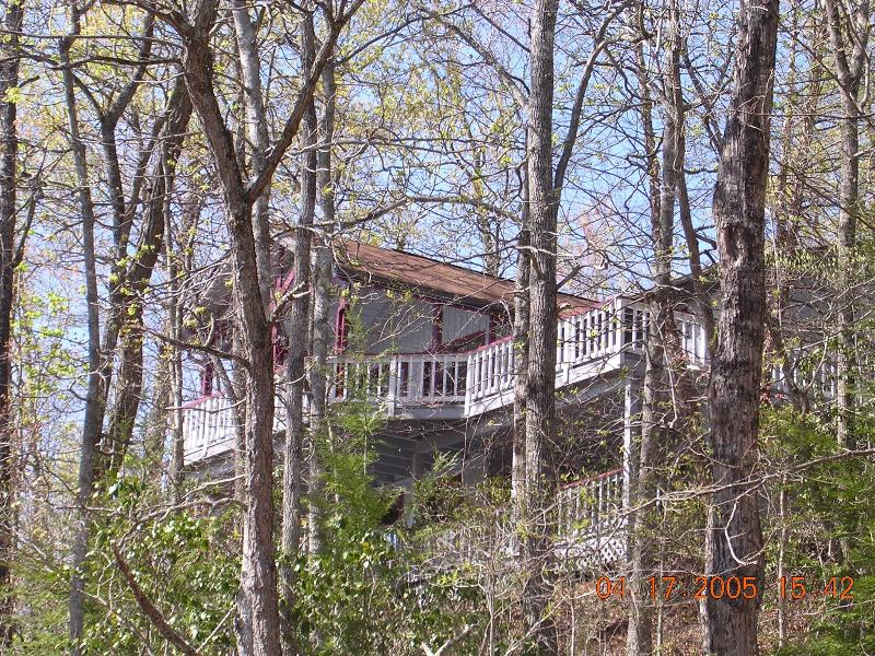 Multi-tiered decks nestled in the trees - Smoky Mountain Retreat - Franklin - rentals