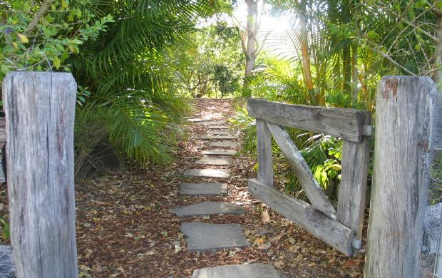 Entrance to the private Cottage garden - Hillcrest Mount Warning View Retreat - Spa Cottage - Upper Crystal Creek - rentals