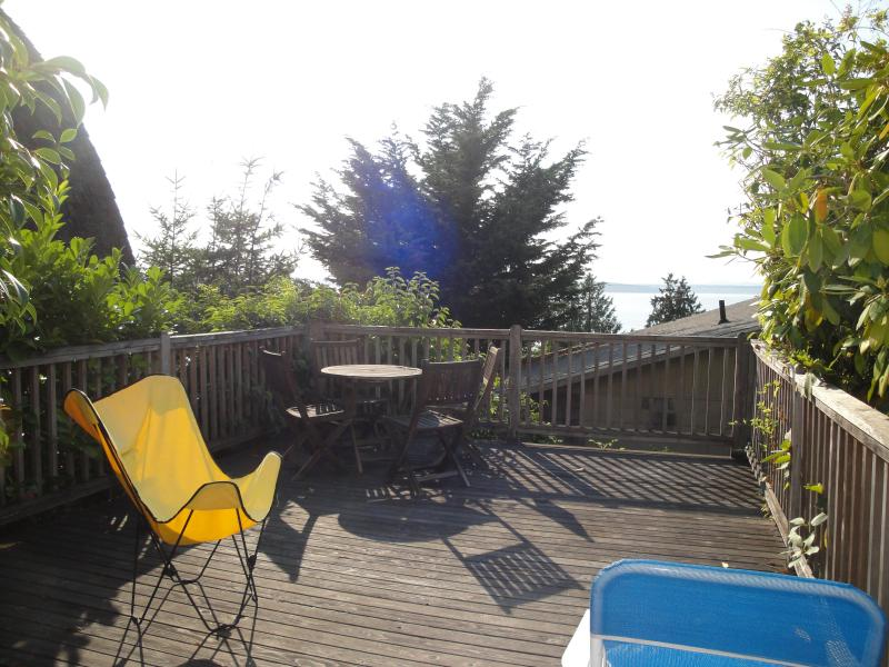 Deck for the apartment. - Extra Large Studio with Water and Mountain View - - Seattle - rentals