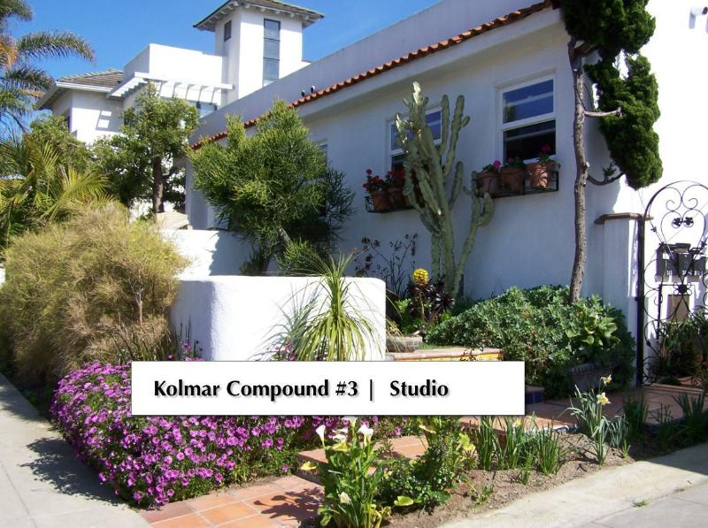 Front view of property, Studio is in back - Kolmar Compound #3 - La Jolla - rentals