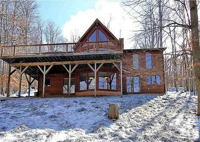 Charming mountain cabin offers all of the comforts of home and privacy too! - Image 1 - Davis - rentals