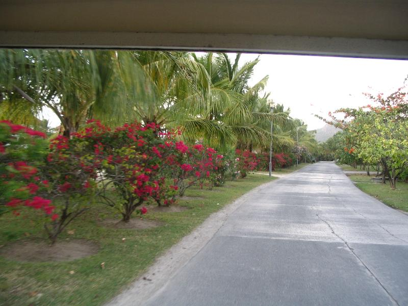 Street View - Premier Caribbean Vacation Villa on the Water - Jolly Harbour - rentals