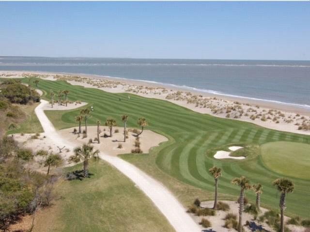 Ocean Club 1508 - Image 1 - Isle of Palms - rentals