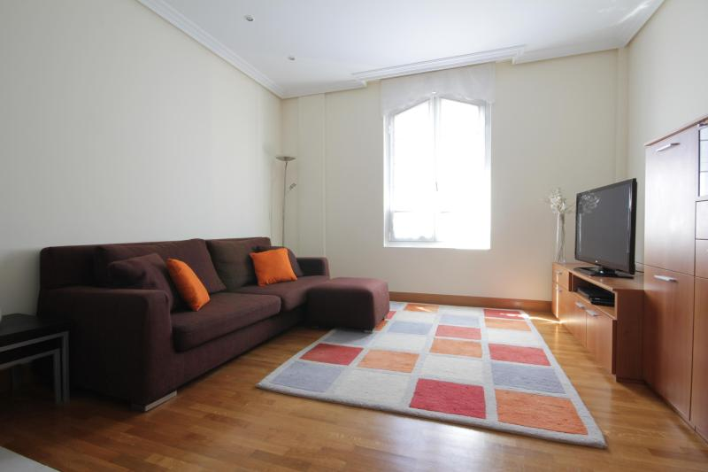 Spectacular apartment in the heart of San Sebastia - Image 1 - San Sebastian - Donostia - rentals