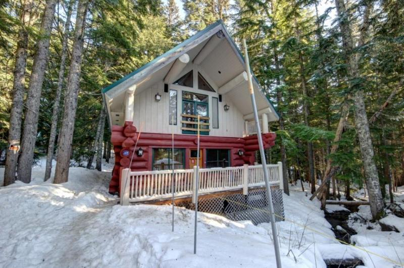 Little Bear Cabin - Image 1 - Government Camp - rentals