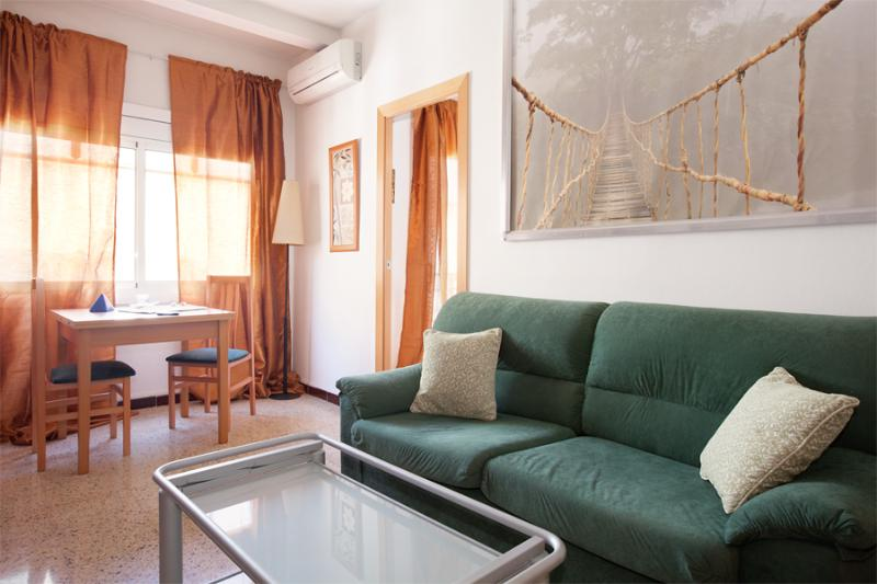 Living room  - Business - Barcelona - rentals
