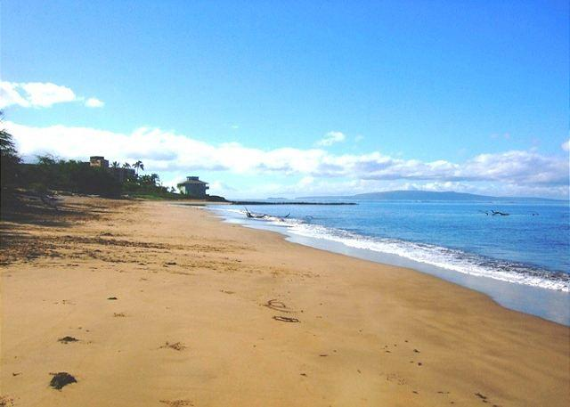 Long Sandy Beach Across From Kihei Bay Surf - Kihei Bay Surf #238 Completely Remodeled  Great Rates! - Kihei - rentals