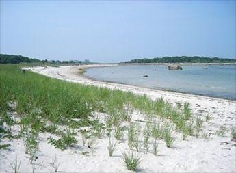 Beach - BIG SALE - wk of 6/21 for $3000 wk of 6/28 $4000! 116312 - West Falmouth - rentals