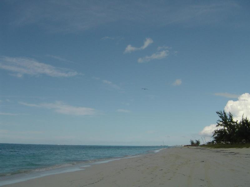 Princess Alexandra National Park and Beach  - Silver Palm Beach House 1A, Turks & Caicos Hotel - Providenciales - rentals
