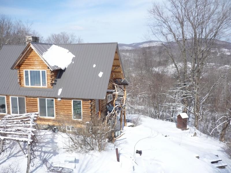 looking north - HICKORY RIDGE VERMONT LOG CABIN - West Pawlet - rentals