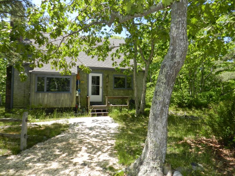 #492 Plenty of Privacy in this Chappy Cottage in the woods - Image 1 - Chappaquiddick - rentals
