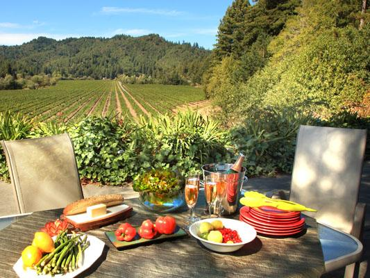 Vineyard Villa, Beautiful Wine Country Home - Vineyard Villa - Guerneville - rentals