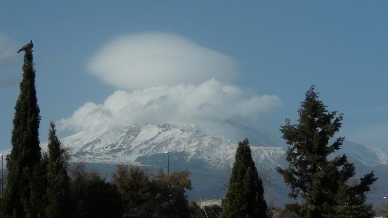 view from the balcony - appartment on Etna - Italy - rentals