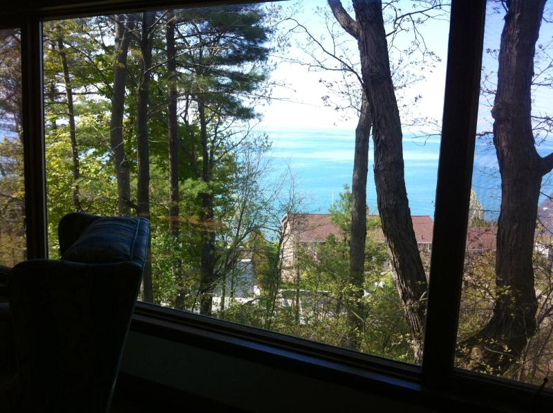 view from living room - Million Dollar View - New Buffalo - rentals