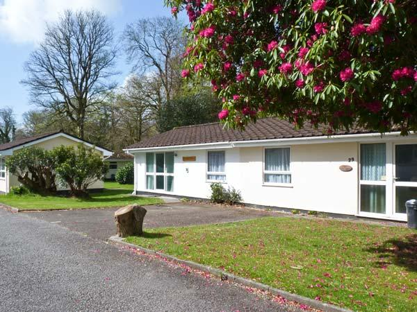 TRANQUILLITY, on-site fishing, WiFi, ground floor accommodation, near Liskeard, Ref. 21135 - Image 1 - Liskeard - rentals