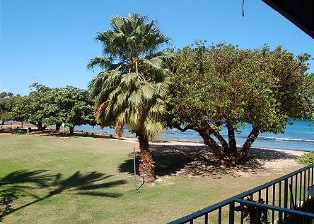 Hale Kai # 208 – Where families and friends gather in the Maui sun - Image 1 - Lahaina - rentals