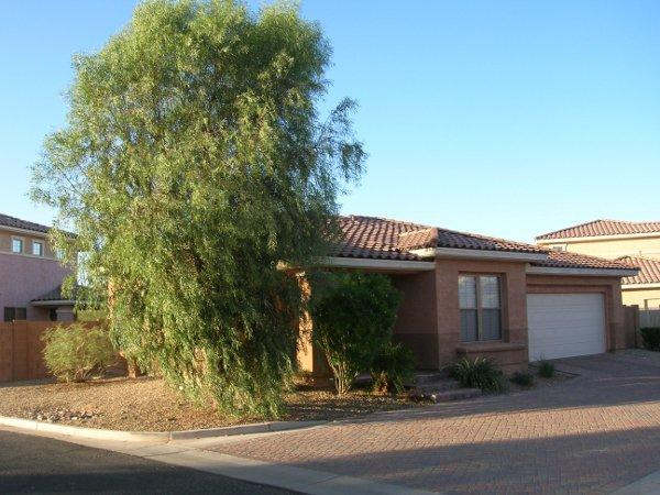 Relaxing And Tranquil Home In A Beautiful Setting - Image 1 - Goodyear - rentals