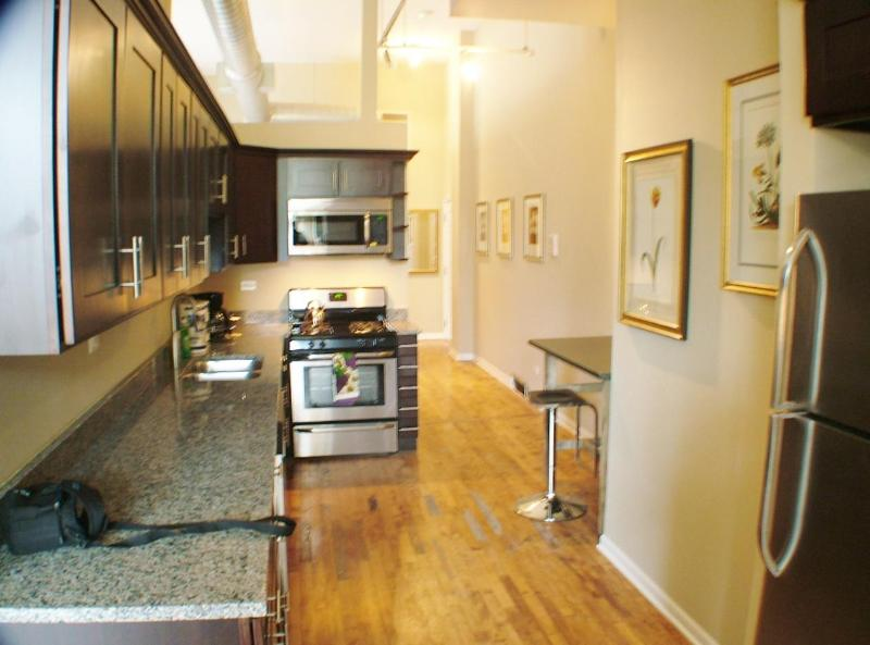 2bd apt in Wicker Park -  Bathhouse - Image 1 - Chicago - rentals