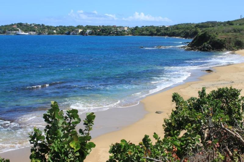 The Sands  - Rare Vieques Oceanfront With Your Own Private Stairway to the Beach - Image 1 - Vieques - rentals