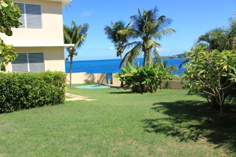 The Sands - Harbour View - Rare Vieqeus Oceanfront With Your Own Private Stairway to the Beach! - Image 1 - Vieques - rentals