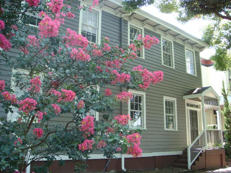 Welcome to the Mimosa House - Mimosa House in Historic Savannah - Savannah - rentals